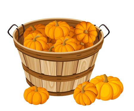 Wooden basket with pumpkins. Vector