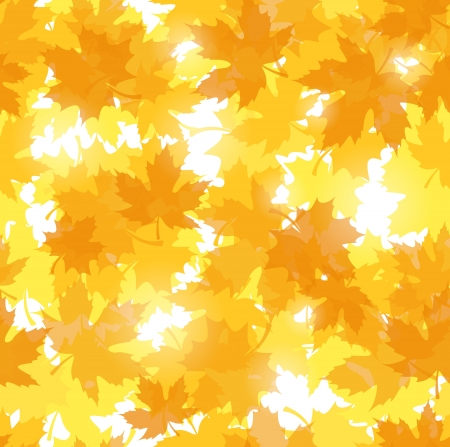 withered: Seamless pattern with autumn maple leaves.