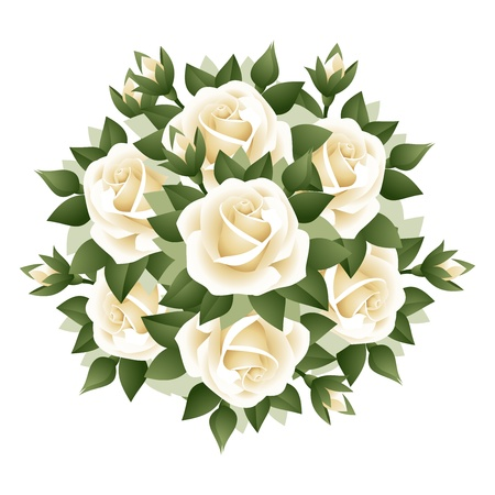 bouquet flowers: Bouquet of white roses.  Illustration