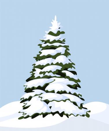 firtree: Snowy fir-tree