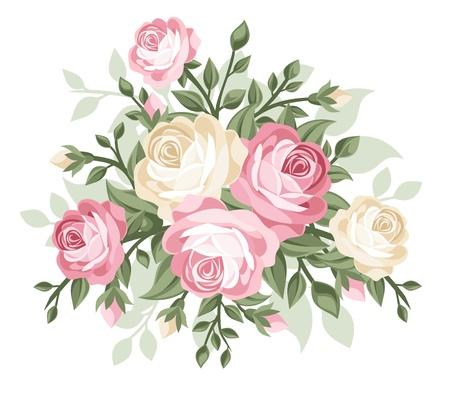 rose bud: illustration of vintage roses