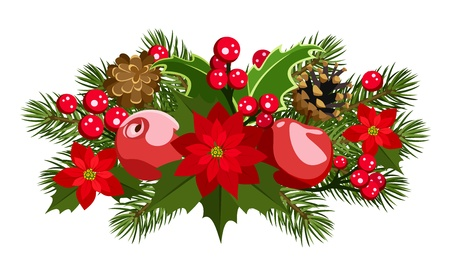 Christmas decoration with holly, fir-tree, cones, poinsettia and apples. Vector