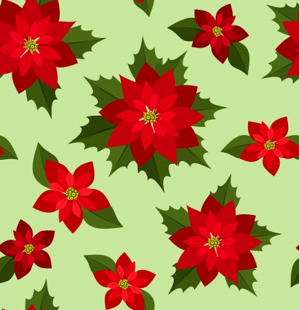 christmas flower: Seamless Christmas background with red poinsettias.