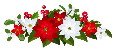 Christmas bouquet with red and white poinsettias, holly and mistletoe.  Vector