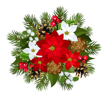 Christmas decoration with poinsettia, fir-tree, cones, holly, and mistletoe. Vector