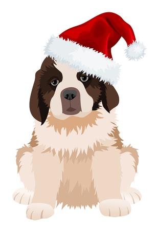 st bernard: St Bernard puppy in Christmas hat.  Illustration