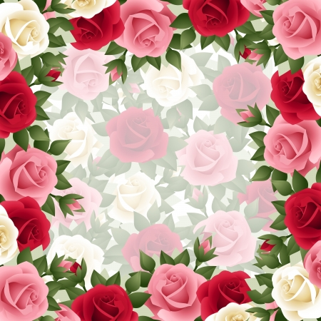 Background with colored roses.  Vector