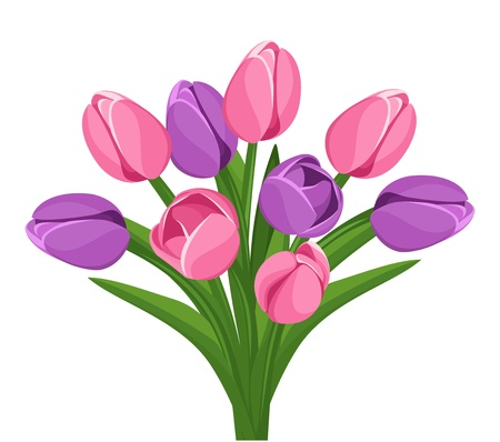 nine: Bouquet of pink and purple tulips. Vector illustration.