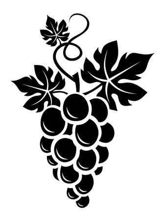 bunch of grapes: Black silhouette of grapes   Illustration