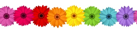 Horizontal seamless background with colored gerbera.  illustration. Vector