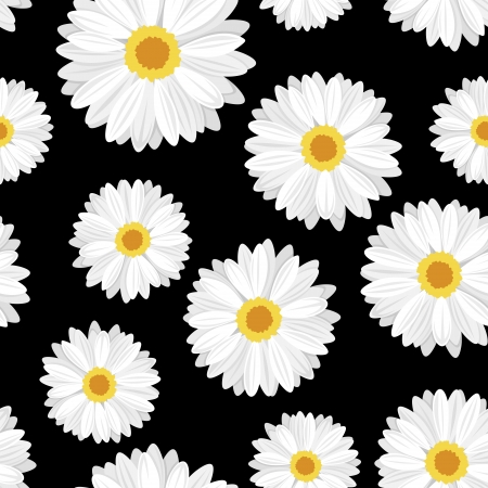 white daisy: Seamless background with daisy flowers on black.  illustration. Illustration