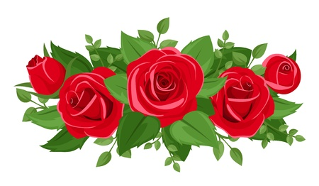 Red roses, rosebuds and leaves. Vector illustration. Illustration