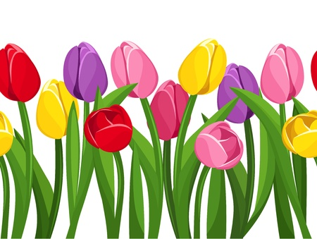Horizontal seamless background with colored tulips. illustration. Vector