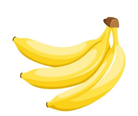 banana: Bunch of bananas isolated on white. Vector illustration.
