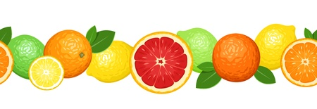 oranges: Horizontal seamless background with citrus fruits.