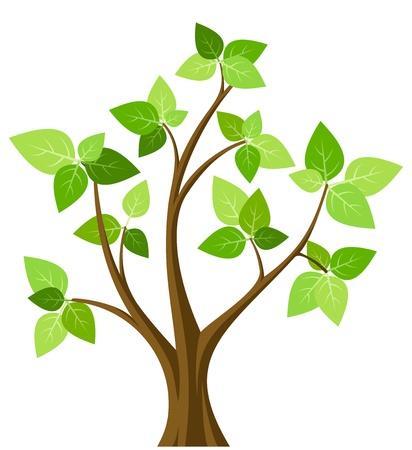 deciduous tree: �rbol abstracto del resorte. ilustraci�n. Vectores