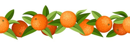 Horizontal seamless background with oranges  Vector illustration  Vector