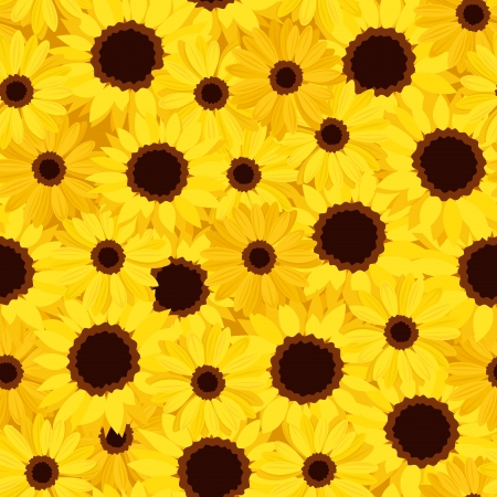 calendula: Seamless background with sunflowers and calendula Illustration