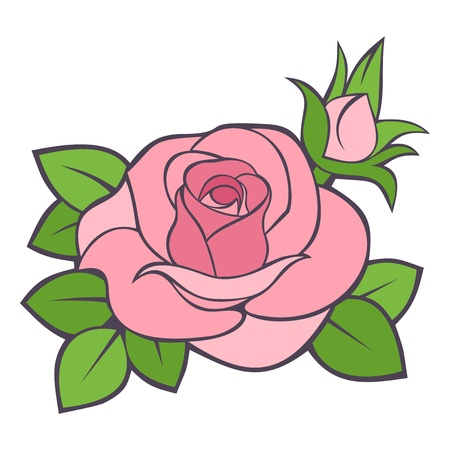 rosebud: Pink rose.  illustration. Illustration