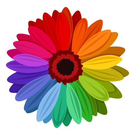 Gerbera flowers with multicolored petals. Vector illustration. Иллюстрация
