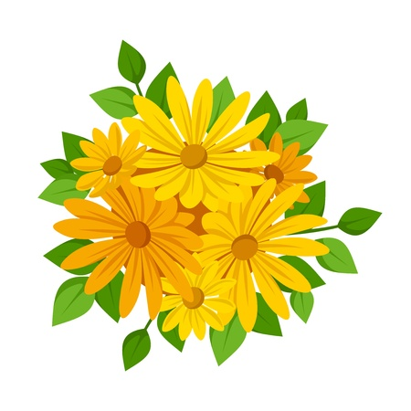 calendula: Orange flowers. Vector illustration. Illustration