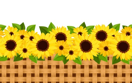 repetition row: Horizontal seamless background with sunflowers and wicker. Vector illustration.