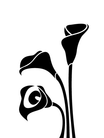 flowers close up: Black silhouettes of calla lilies illustration