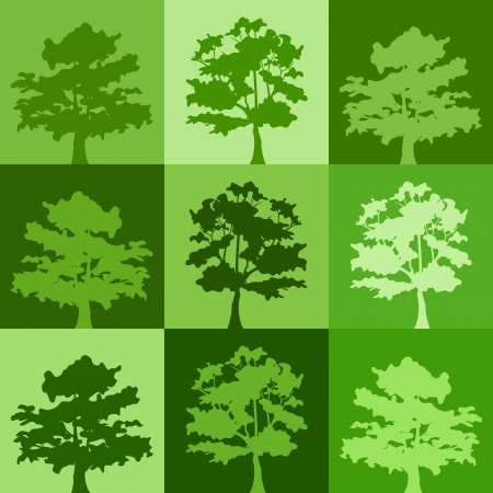 patchwork landscape: Green silhouettes of trees.  background. Illustration
