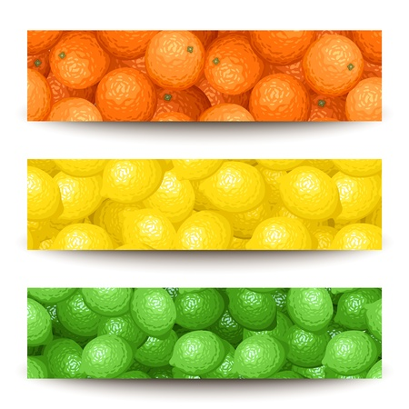 Three vector banners with citrus fruits. Vector