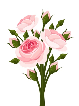 decorative style: Pink roses branch  illustration