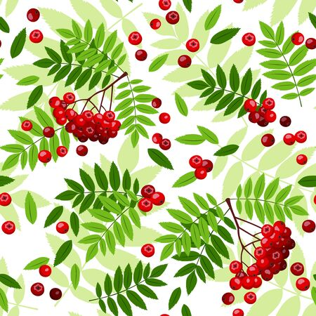 Seamless pattern with rowan leaves and berries  Vector illustration  Vector