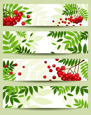 Four vector banners with rowan branches  468x120px   Vector