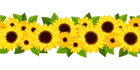 bright borders: Horizontal seamless background with sunflowers and calendula  Vector illustration