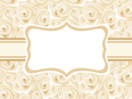 ivory: Vector card with white roses
