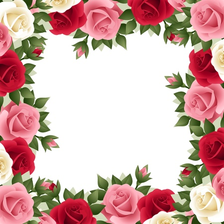 Colored roses frame  Vector illustration