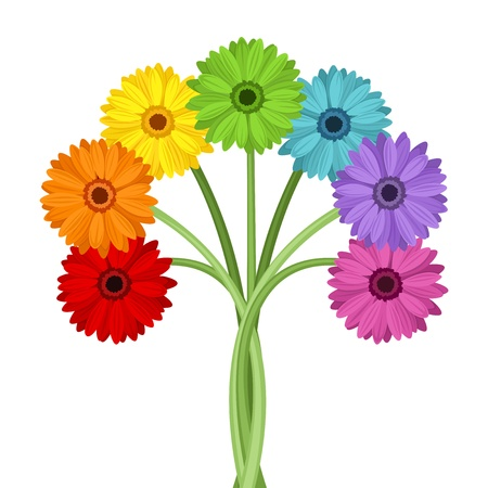 Bouquet of colorful gerbera flowers  Vector illustration  Çizim