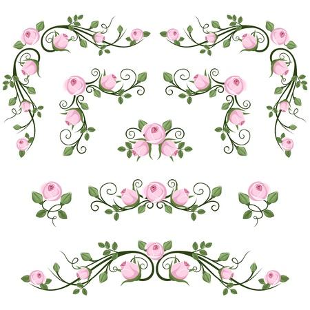 Vintage kalligrafische vignetten met roze rozen Vector illustration