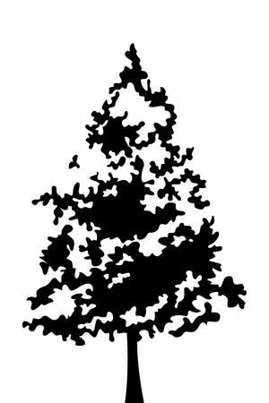 forest clipart: Black silhouette of tree  Vector illustration