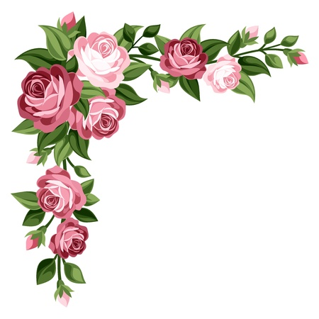 leafage: Pink vintage roses, rosebuds and leaves illustration