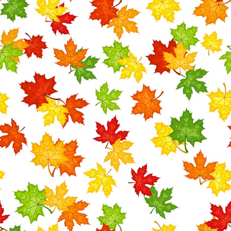 leafage: Seamless pattern with autumn maple leaves  Vector illustration