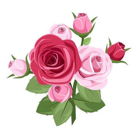 rosebud: Red and pink roses
