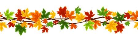 Horizontal arrière-plan transparente avec automne feuilles d'érable Banque d'images - 21781854