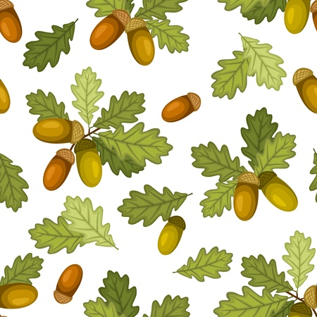 oak leaves: Seamless pattern with acorns and oak leaves  Vector illustration