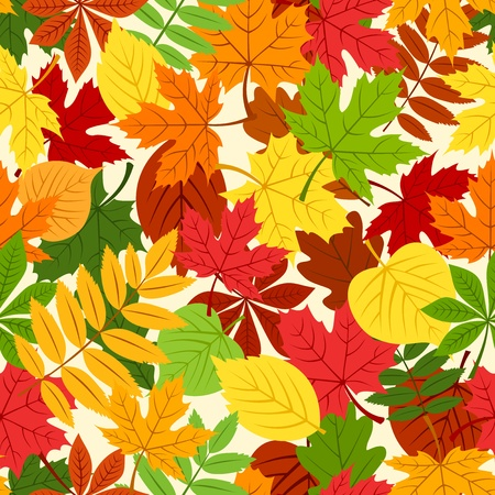 Seamless pattern with colorful autumn leaves  Vector illustration Stock Vector - 22175434
