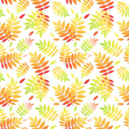 Seamless pattern with autumn colorful rowan leaves  Vector illustration  Illustration
