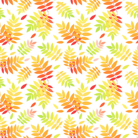 Seamless pattern with autumn colorful rowan leaves  Vector illustration  Vector