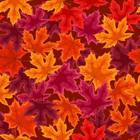 withered: Seamless pattern with autumn maple leaves  Vector illustration