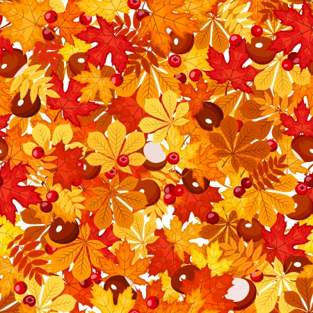 Seamless pattern with autumn leaves  illustration  Vector