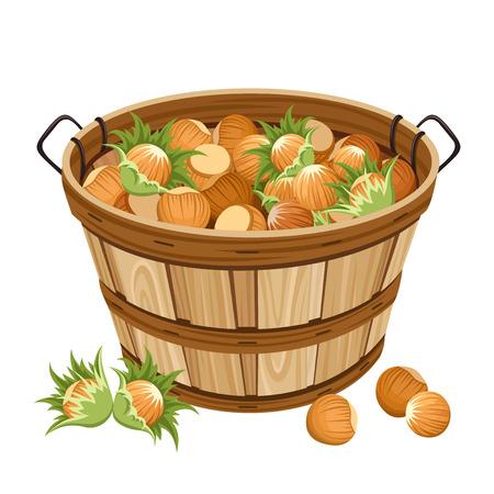 harvest basket: Basket with hazelnuts  illustration  Illustration