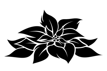 poinsettia: Christmas poinsettia  Vector black silhouette